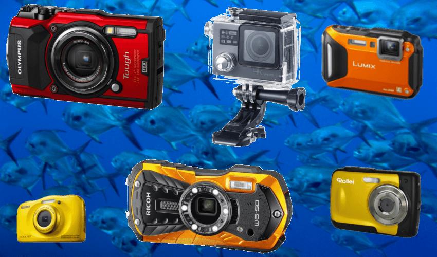 Im Hintergrund Fische im See und im Vordergrund verschiedene Unterwasserkameras und wasserdichte Kameras