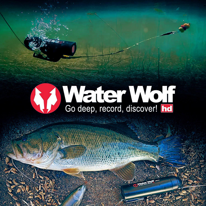 Logo von der Unterwasserkamera von Water Wolf