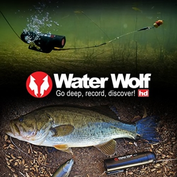 Water Wolf  Logo